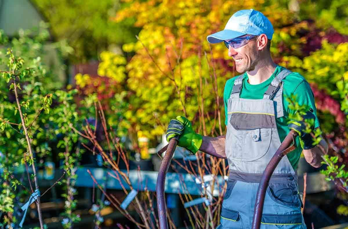man-landscaping-fort-collins