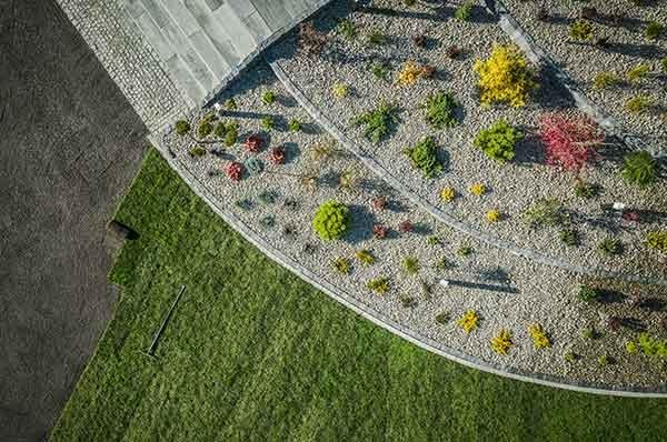 view-landscaped-yard-fort-collins
