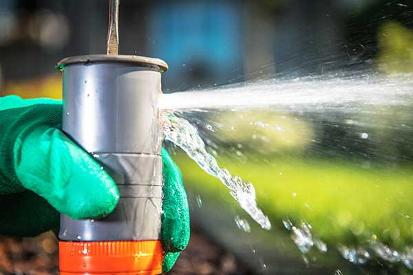 sprinkler-system-fort-collins-co